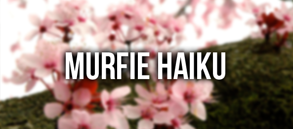 Giveaway: Make a Murfie Haiku