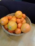 Goodbye, oranges!!! (Wait-- someone's bringing those, right?)